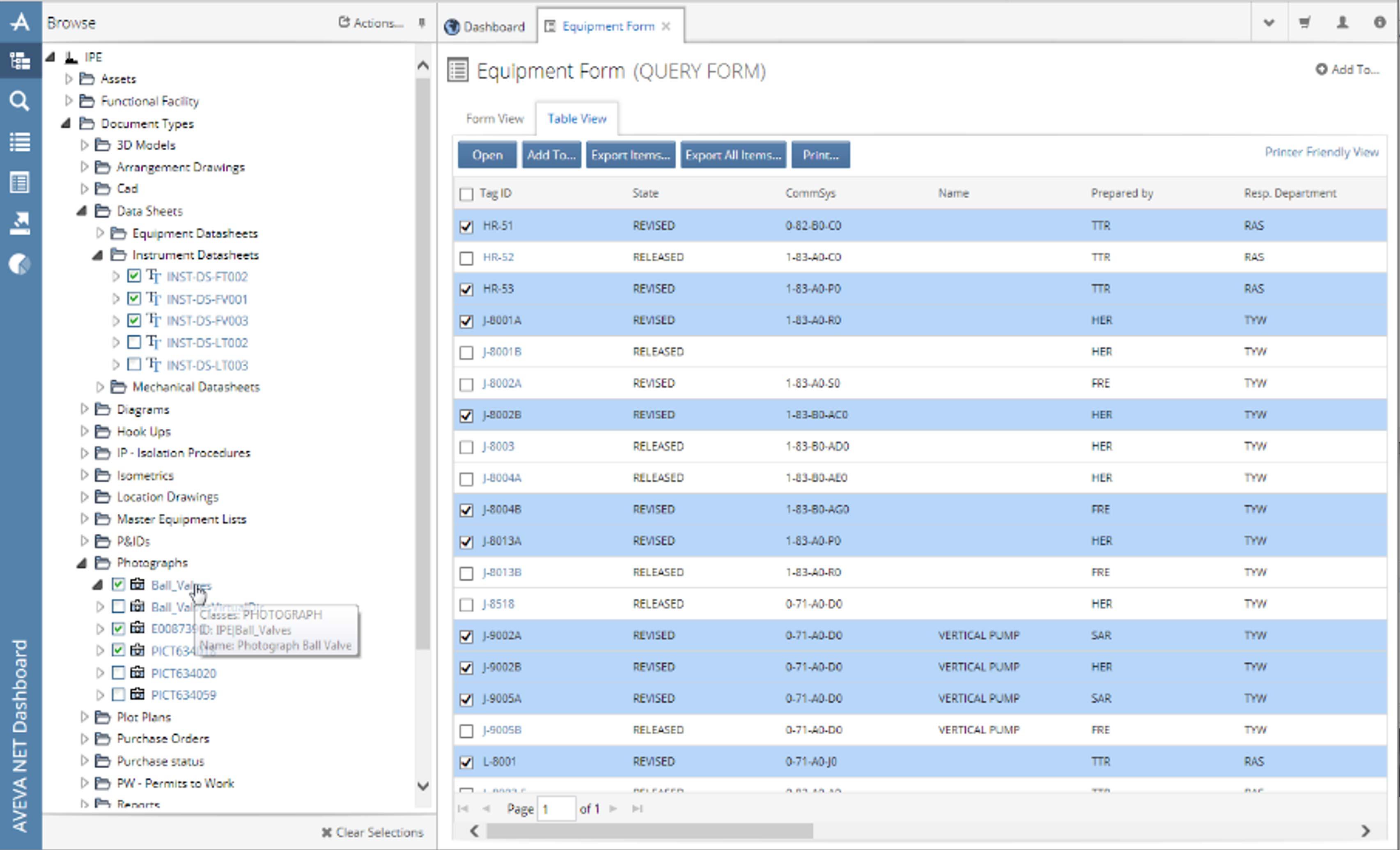 AVEVA Asset Information Management Equipment Form